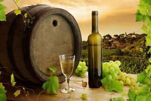 Solutia integrata ASiS pentru viticultura si vinificatie